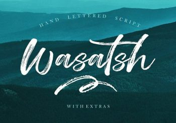 100+ Beautiful Script, Brush & Calligraphy Fonts