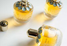 Finden Sie Ihren neuen Signature-Duft mit den besten Parfums für Frauen